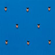 Afbeelding van Arrows - Blauw