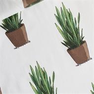 Afbeelding van Sansevieria - Cotton Lawn - Gebroken Wit